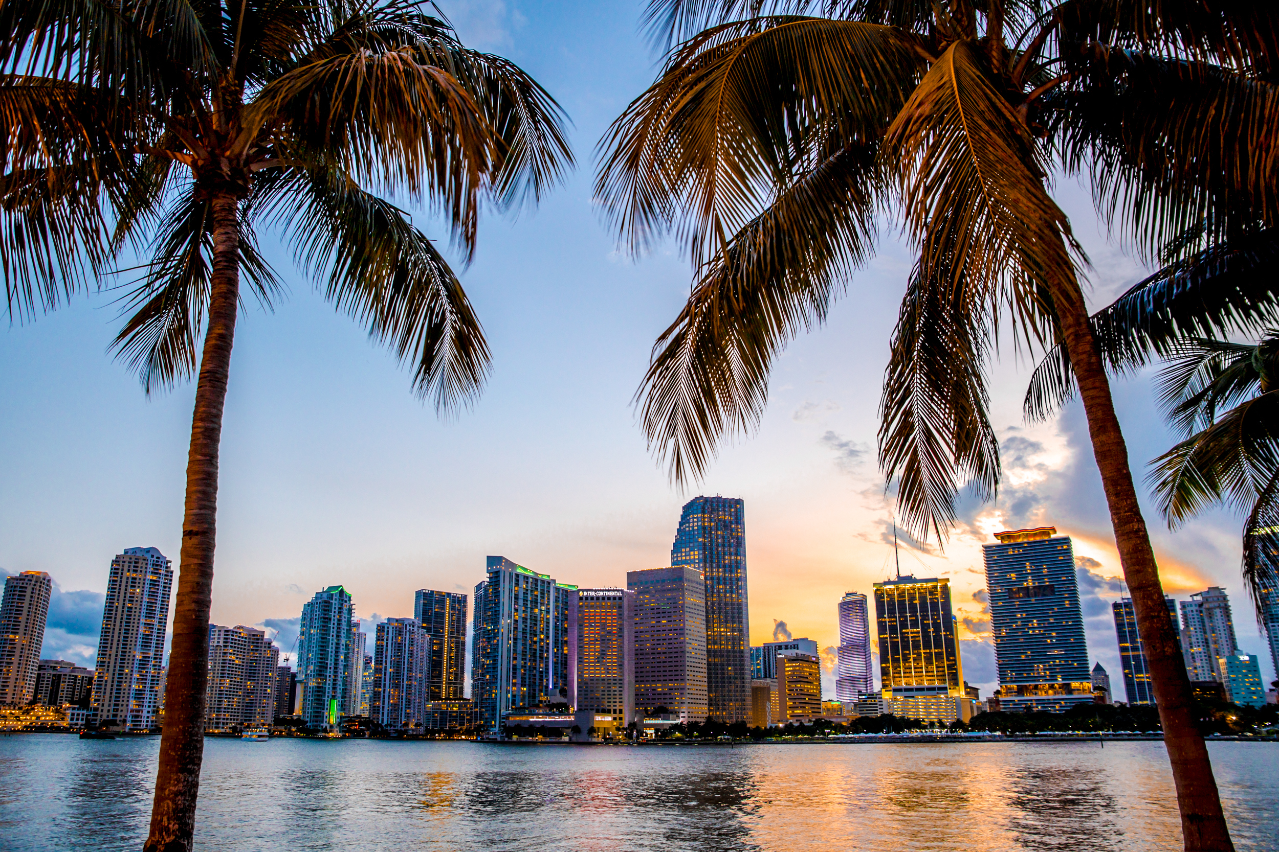 10 US & LatAm Startups Selected for Our 2018 Miami Growth Program!